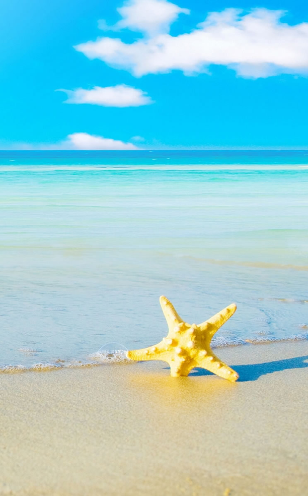 10-star-fish-sea-beach-sand-wallpaper
