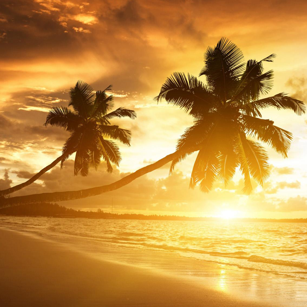 beach-sunset-beautiful-widescreen-hd-wallpapers